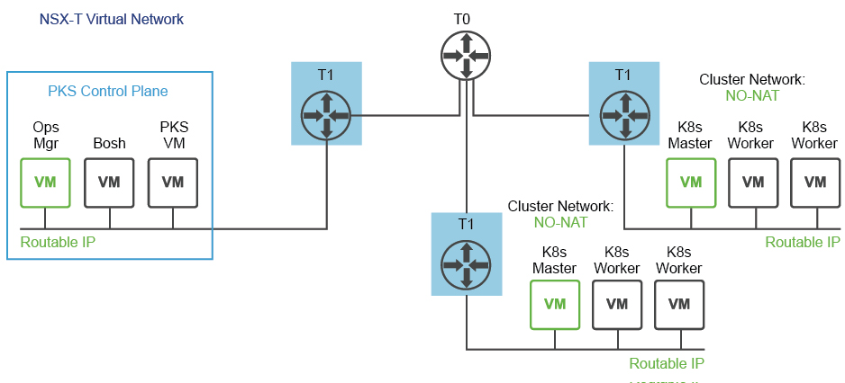 NO-NAT with Logical Switch (NSX-T) Topology